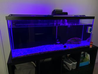 Aquarium and Accessories for Sale in San Diego,  CA