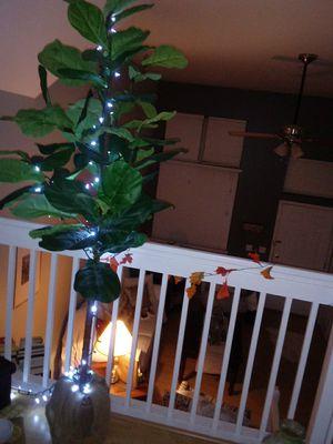 Potterbarn 6' plant tree for Sale in Dearborn, MI