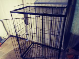 Animal cage, birds, cats, and lizards for Sale in Price, UT