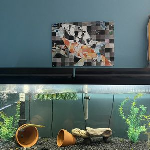55 Gallon Fish Tank Aquarium Read Description Please for Sale in Long Beach, CA