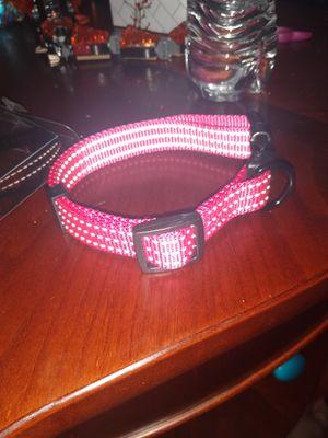 Dog Collar Medium $10obo for Sale in Oregon City, OR