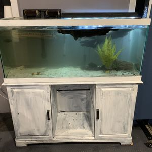 75 Gallon Aquarium With Equipment for Sale in Alexandria, VA