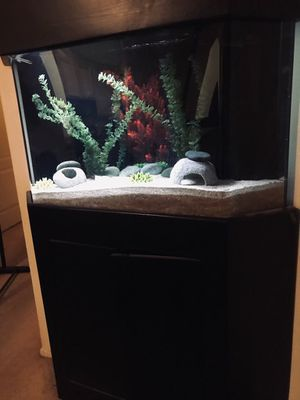 Fish tank for Sale in Sylmar, CA