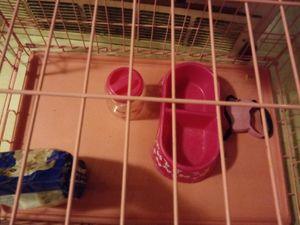 Pink Dog Crate small/Med pups for Sale in Whitehall, OH
