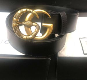 Brand new gucci belt for Sale in Hollywood, FL