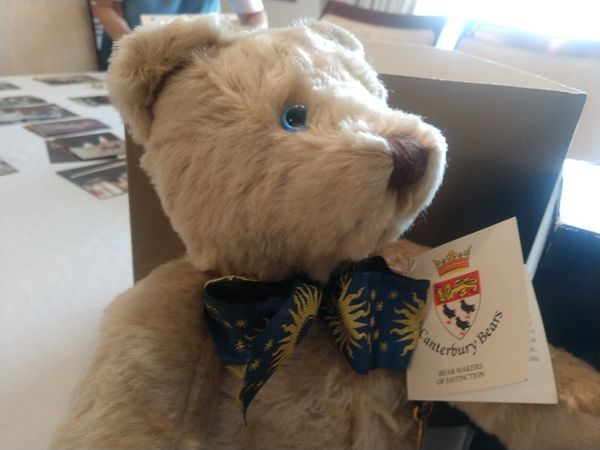 Collector's Series Smithsonian Institute Teddy Bear