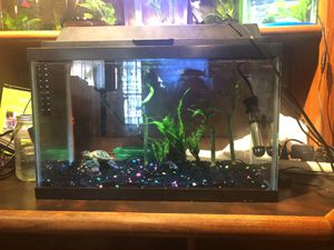 10 gallon aquarium with hood light, filter and heater for Sale in Silver Spring, MD