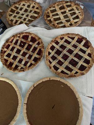 Pies for Sale in San Antonio, TX