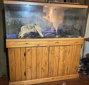 55 Gallon Aquarium with unfinished wood stand for Sale in Claremont, CA