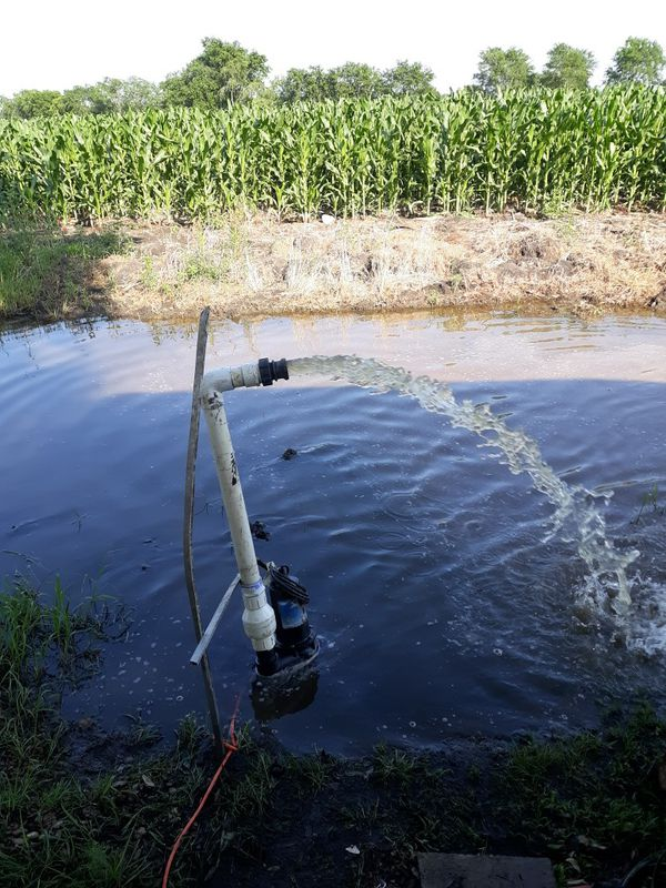 Water/sewer pump 2inch