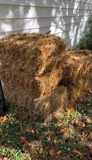 5 Hay bales for sale for Sale in Damascus, MD