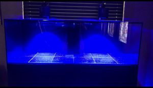 175 gallon fish tank for sale for Sale in Los Angeles, CA