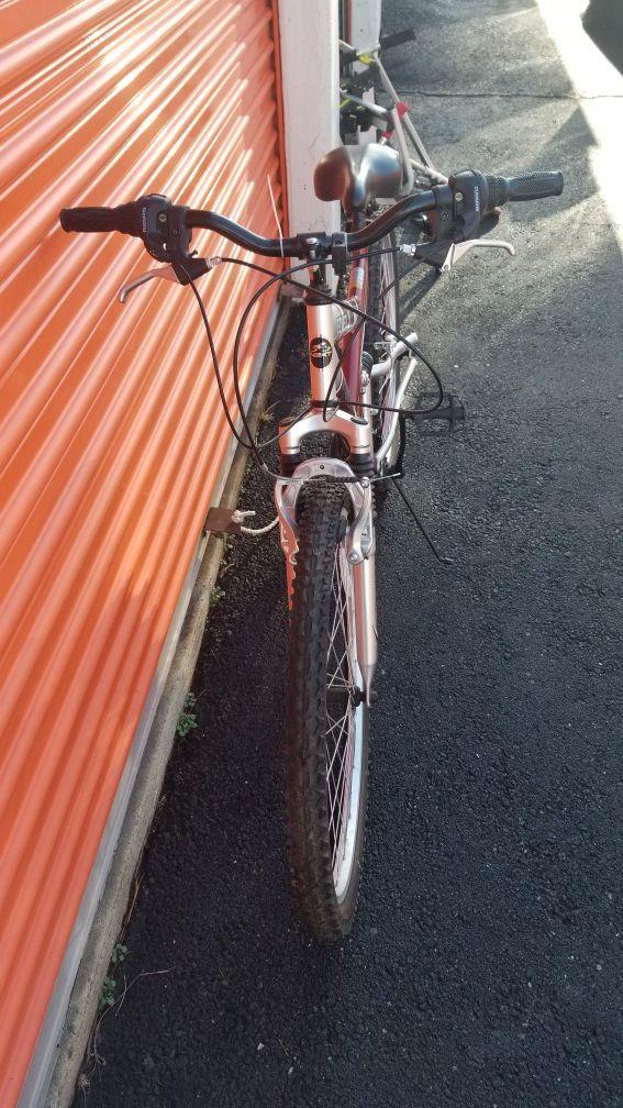 Size 24 adult bike