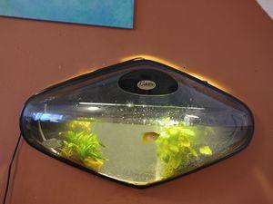 Bubble Aquuatech. inclulle motor luz mas el filtro todo prente por un solo bonton for Sale in Dracut, MA