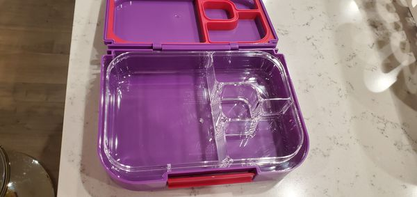 6 School bento lunch boxes