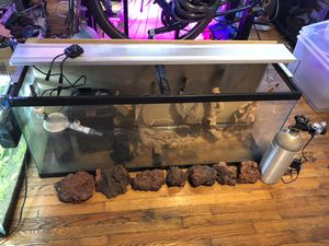 55 gallon , planted aquarium setup with CO2, filter, light for Sale in Chicago, IL