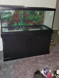 Terrarium/Aquarium for Sale in Tukwila,  WA