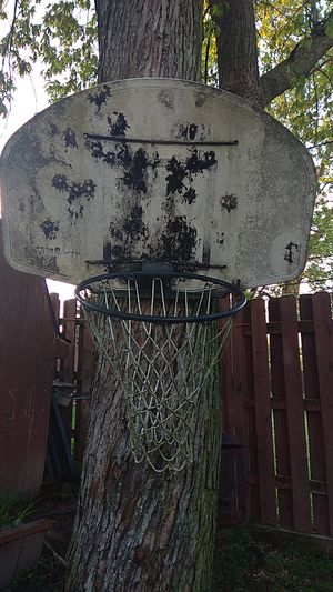 Basketball hoop for Sale in Hickory Hills, IL
