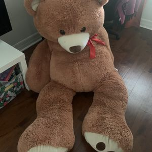 teddy Bear for Sale in Tampa, FL