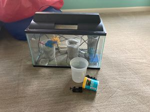 10 Gallon Fish Tank +Rocks +decorative plants +Food for Sale in Herndon, VA