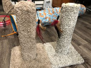 Cat Scratch Posts for Sale in Hayward, CA