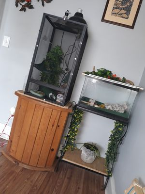 Lizard/fish tank for Sale in Cleveland, OH