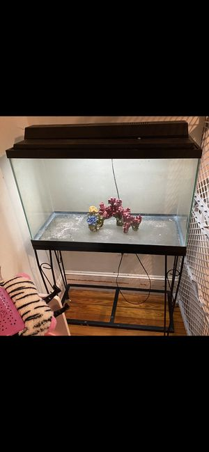 29 Gal Fish Tank W/ Lid Light & Stand All In Great Condition Tank Holds Water for Sale in Woonsocket, RI
