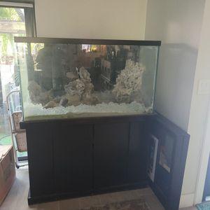 110 Gallon Fish Tank for Sale in Miami, FL