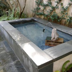 Fountain And Pond Cleaning Or Maintenance for Sale in Houston, TX