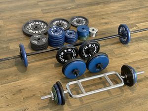 Gym weight Equipment (Weight Plates, Barbell, Dumbbell Handle Bars, Tricep Bar) TOTAL 250+LBS for Sale in Glenview, IL