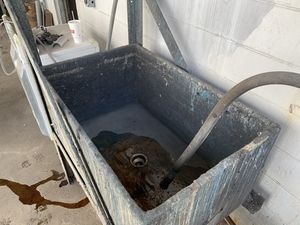 Wash Tub for Sale in Tampa, FL
