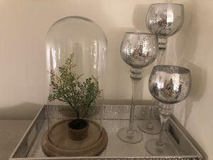 Wood cloche w/ plant for Sale in Jersey City, NJ