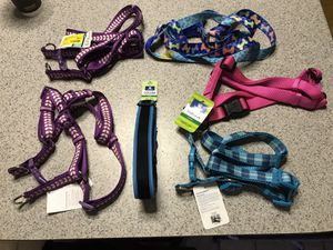 1 dog collar and 6 asst. dog harnesses. for Sale in Billerica, MA