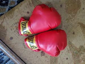 Everlast boxing gloves for Sale in Saint Charles, MO