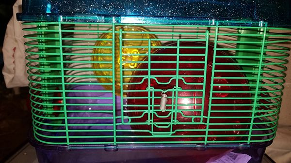Hamster Cage with ball