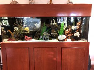 180 gallon salt water fish tank !!! Powder tang alone is $400. Looking for best offer 310*795+3717 for Sale in Santa Monica, CA