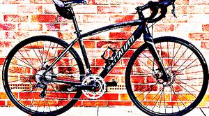 FREE bike sport for Sale in Norwich, ND