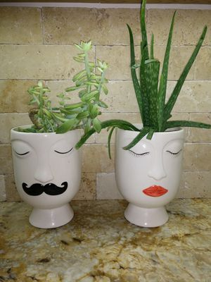 His and Hers Succulent Planters and Plants for Sale in Gulfport, FL