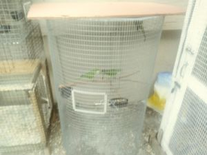 Bird cage large for Sale in Miami, FL