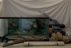 40 Gallon Fish Tank Full Setup for Sale in Apple Valley, CA