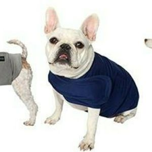 AKC - America Kennel Club Anti Anxiety and Stress Relief Calming Shirt For Dogs for Sale in Boca Raton, FL