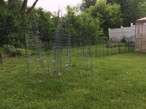 Tomato Plant Holders for Sale in Dracut, MA