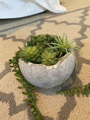 Mini succulent faux decor for Sale in Plano, TX