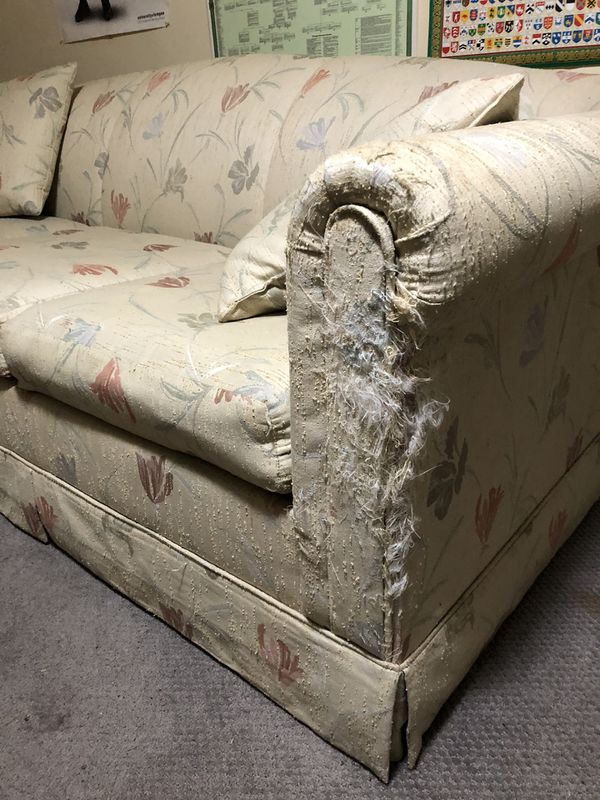 Free Couch With Sleeper Pullout (sofa bed)