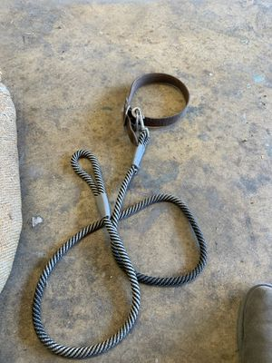 Leash and leather dog collar for Sale in Fresno, CA