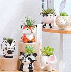 Cute Succulent Planter, Succulent Pots with Drainage Hole Flower Plant Pot Cartoon Ceramic Tiny Pot for Indoor Mini Flower Planters Cactus Container S for Sale in Boca Raton,  FL