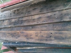 Nailey pine barn boards for Sale in US
