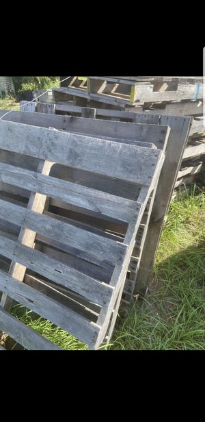 I pick up pallets for Sale in Wahneta, FL