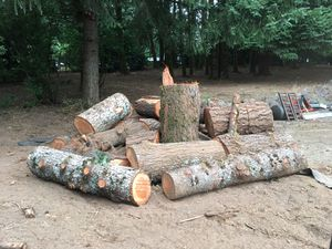 Firewood for Sale in Wilsonville, OR