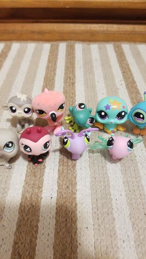 Very rare kids littlest pet shop toys for Sale in Coral Springs, FL